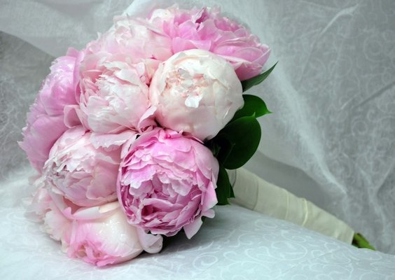 Wholesale wedding florist orange county ca discount wedding flower thousands of 5 star reviews over the last 2 years from our thrilled brides we buy direct from the best flower farms in huge quantity we have the freshest mightylinksfo
