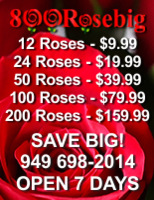 800RoseBig Discount Roses Wholesale