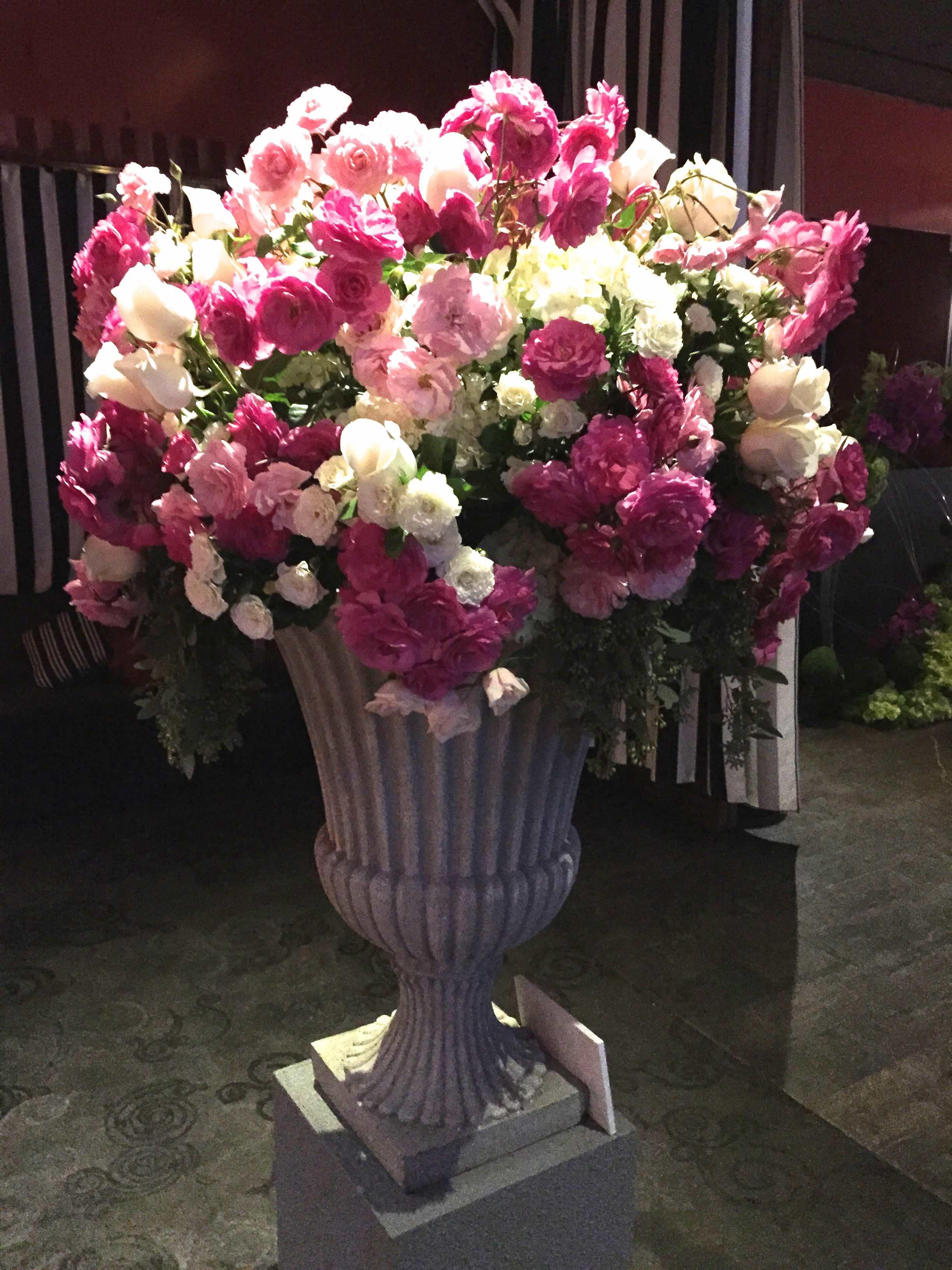 800rosebig Wholesale Florist To The Public Serving Newport